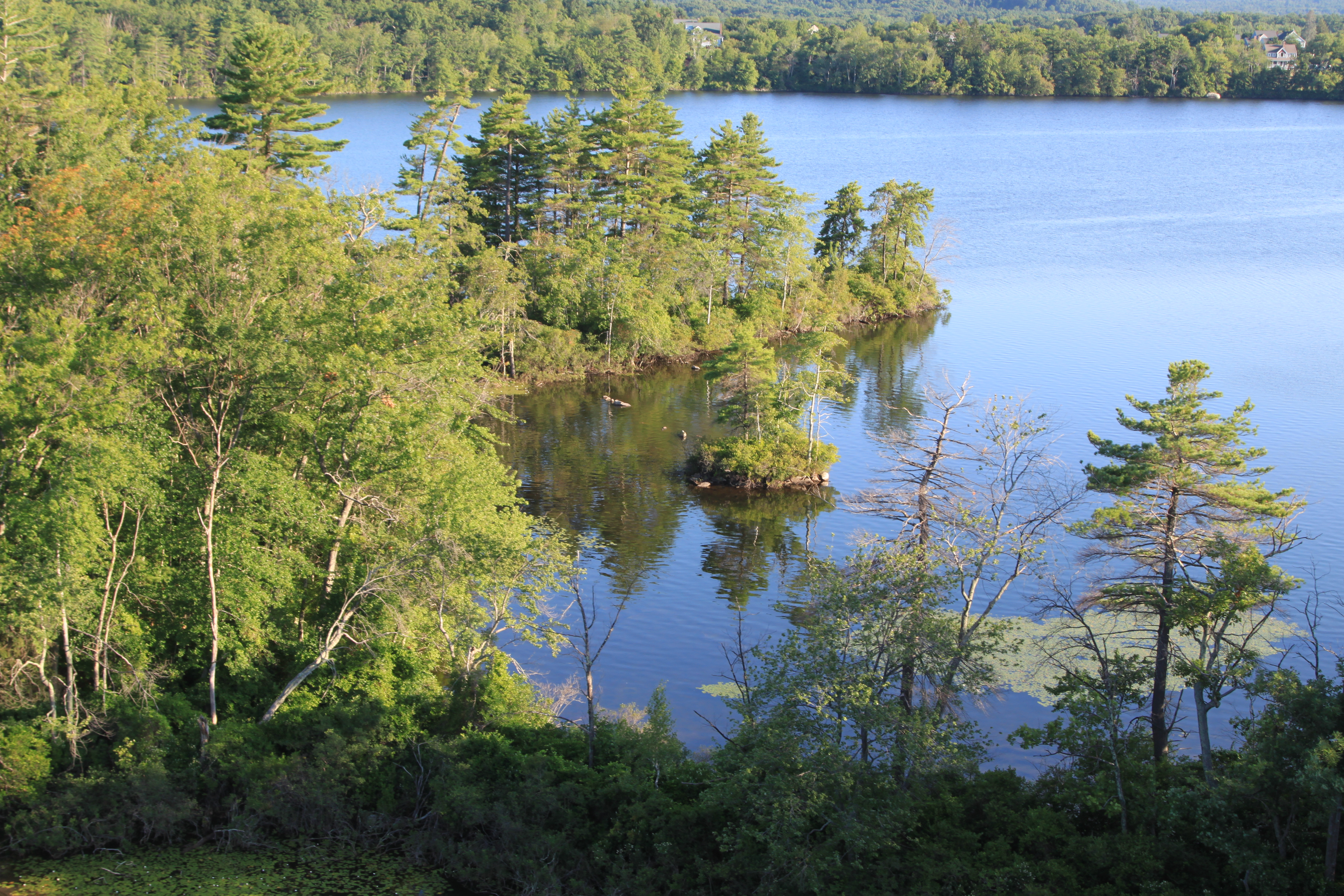 View from balloon flying over Fort Pond in Littleton, MA